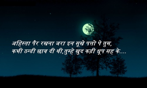 775 Best Hindi Status For Whatsapp About Love Attitude