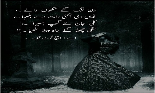 Poetry Punjabi Status for WhatsApp