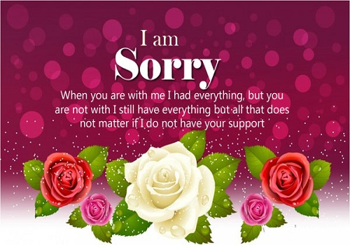 Sorry Status for Friend