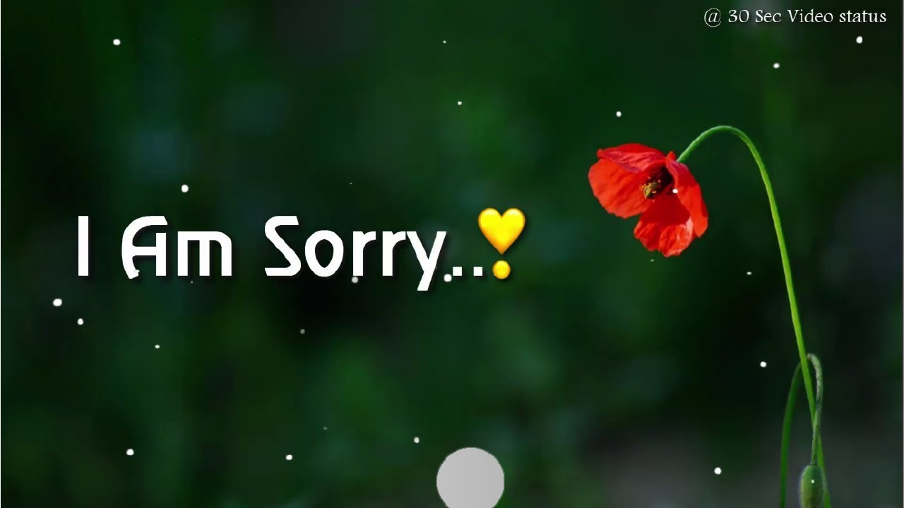 537 Top Saying Sorry Status For Whatsapp Quotes In English