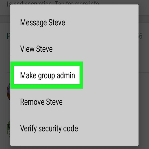 Change Admin on WhatsApp Without Removing from Group