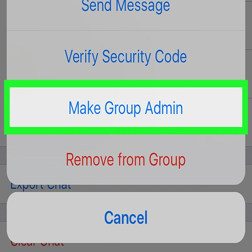 How To Change Group Admin In Whatsapp iPhone
